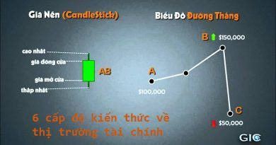 Trọn bộ Video 6 cấp độ về thị trường tài chính cho Trader