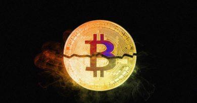 Giá Bitcoin biến động như thế nào sau mỗi lần Halving ?