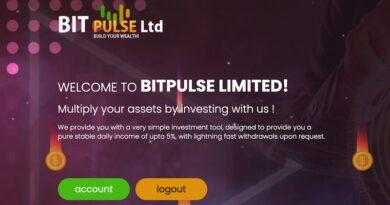 [HYIP Review] Bitpulse – Dự án đầu tư lãi từ 3%-5% hàng ngày